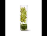 Композиция с орхидеей в стекляной вазе