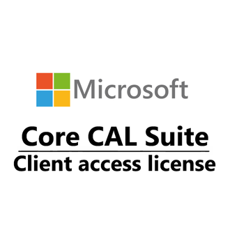 Microsoft Core CAL ENG LicSAPk OLP C Government Device CAL W06-00049