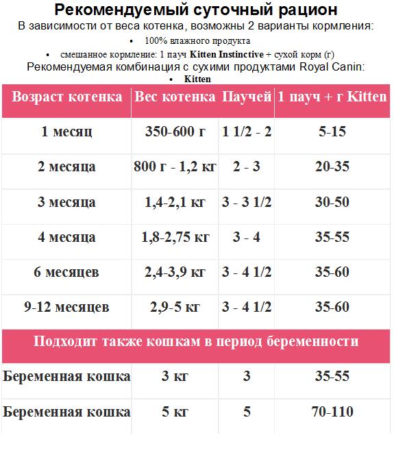 Кот Кузя - купить, продать или отдать в Москве на Avito