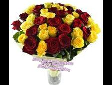 Букет 23 розы