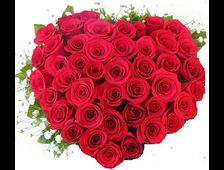 51 алая роза в виде сердца с зеленью Алый Привет