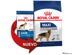 Royal Canin Maxi Adult Роял Канин Макси Эдалт корм для собак крупных пород, 15 кг