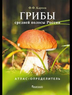 Грибы средней полосы России