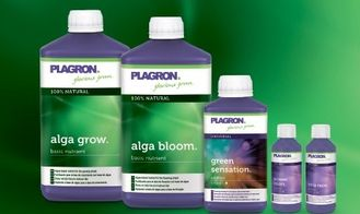 PLAGRON 100% NATURAL
