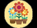 Купить подарочный набор живых цветов в горшочках (праздничный предзаказ)