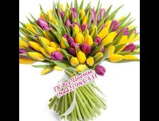 Букет 51 цветной Тюльпан