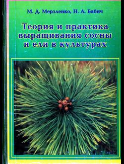 Теория и практика выращивания сосны и ели в культурах