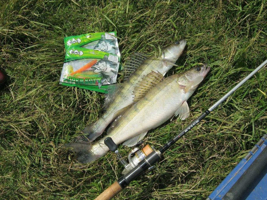 бат про рыболовные товары
