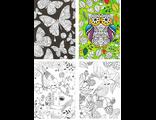 """Набор из 12 тонких открыток раскрасок """"Совы и птичка"""""""