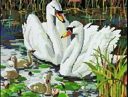 GF 405 Семья лебедей 40*50
