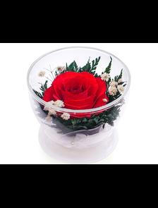 Цветы в стекле #1