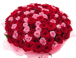 101 Роза Микс Красная+Розовая
