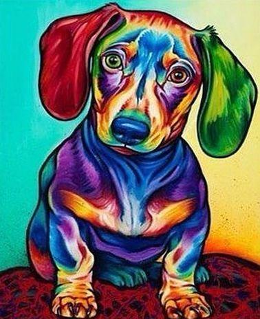 GX 21340 Радужный щенок