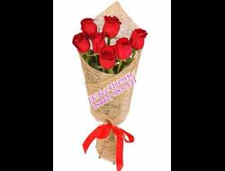 7 роз розые красные 7 штук