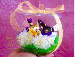 Живая бабочка с цветами в вазе - отличный подарок  на любой праздник в Томске. т. 8-953-921-08-14