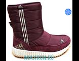 Дутики Adidas бордовые