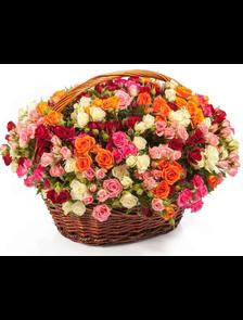 Корзина 51 мелкоцветная роза
