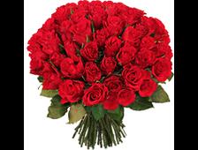 59 роз (красные розы) букет Маркиз