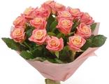 """15 Персиковых роз """"Мисс Пигги"""""""
