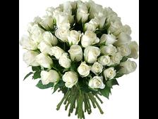 Шикарная простота 25 белых роз