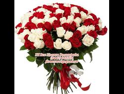 51 бело-розовая роза букетом