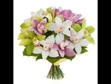 Букет из Орхидей Яркое Изящество