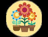 Получить или подарить КОМНАТНЫЙ МИНИ-ЦВЕТНИК с живыми растениями из волшебного Флауэрлэнда (праздничный предзаказ)
