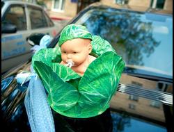 Малыш в капусте (прокат)