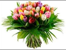 Смешанный букет из 65 Тюльпанов