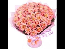 Длииные розы Коррал