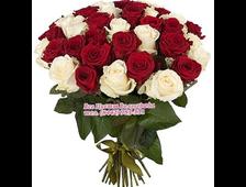 Букет роз Праздный Плюс (35 роз)