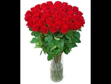 алые розы Волгоград