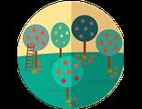 Купить БИЛЕТ В ГАСТРОНОМИЧЕСКОЕ ПУТЕШЕСТВИЕ в страну фруктовых садов (пятница-воскресенье)