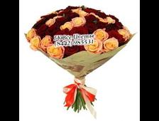 51 роза букет Коралловый Риф