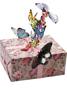 салют из 15 тропических бабочек