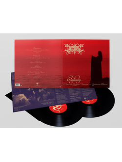 Desire  Infinity... A Timeless Journey Through An Emotional Dream  2-LP