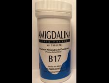 Витамин B17 (60 таблеток, в каждой по 500 мг Амигдалина)
