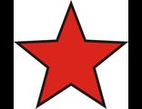 Звезда 8х8см