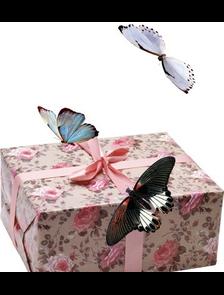 5 бабочек