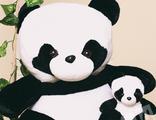 Панда Аврора 80см + маленькая панда
