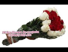 35 голландских роз 100 см