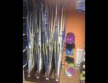 Комплекты беговых лыж бу оптом.