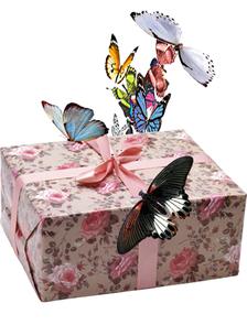 салют из 9 тропических бабочек