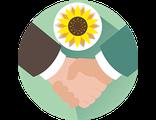 КОММЕРЧЕСКИЕ ПРЕДЛОЖЕНИЯ (презентации, прайс-листы, деловые письма)