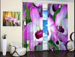 Фотошторы: Розовая орхидея