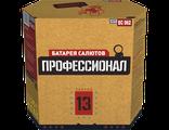 """Батарея салютов """"Профессионал"""" 13(EC062)"""
