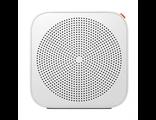 Интернет радио Xiaomi Mi Internet Online Radio