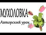 Мухоловка из фоамирана, авторский он-лайн урок