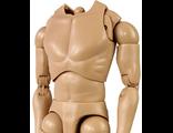Тело V1-N