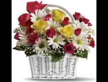 Корзина 29 цветов: разноцветные розы и белые ромашки